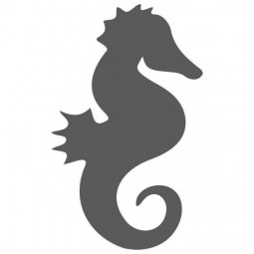 Marquage adhésif, hippocampe-lot de 3