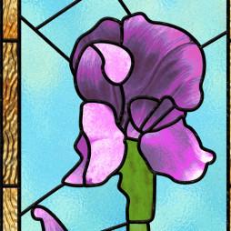 Vitrail fleur, grand iris