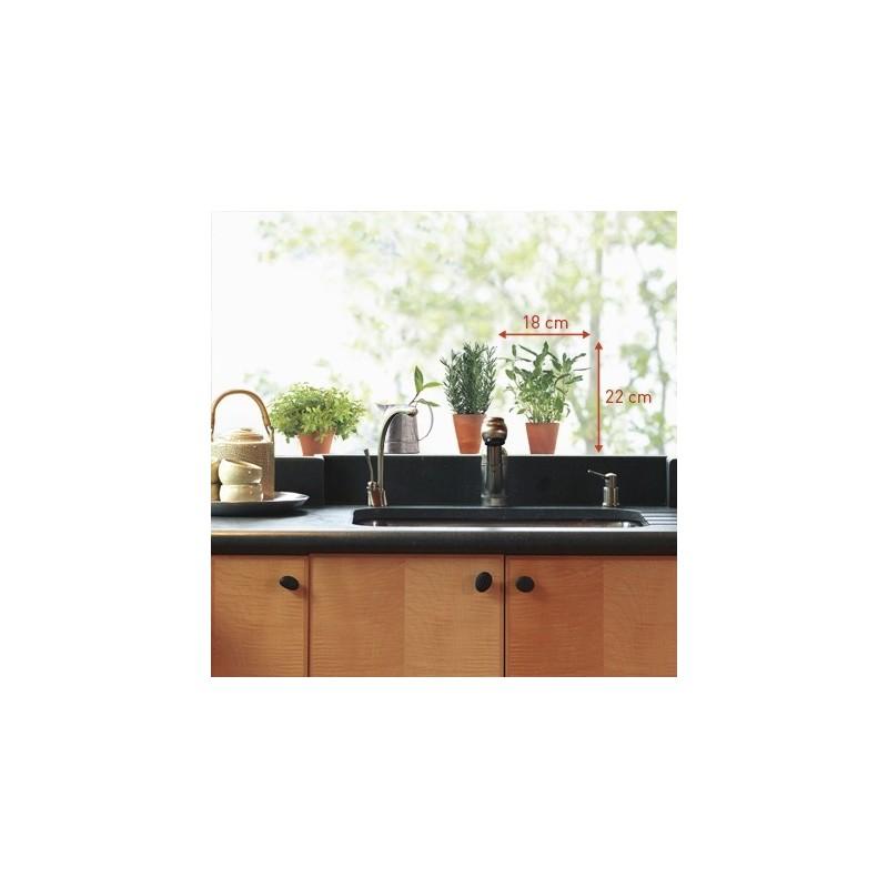 Adhésif de cuisine, plantes aromatiques