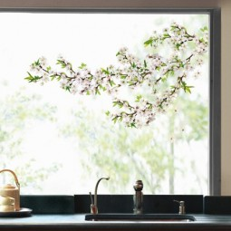 Stickers electrostatique, cerisier blanc
