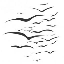 Autocollant de douche, les oiseaux