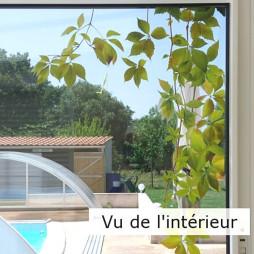 Stickers électrostatiques pour vitres, vigne vierge
