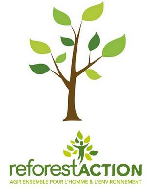 la reforestation une bataille quotidienne